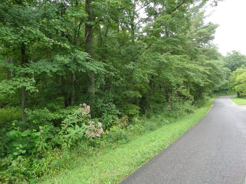 Land for Sale at 600 Coon Hollow Road Sunbright, Tennessee 37872 United States