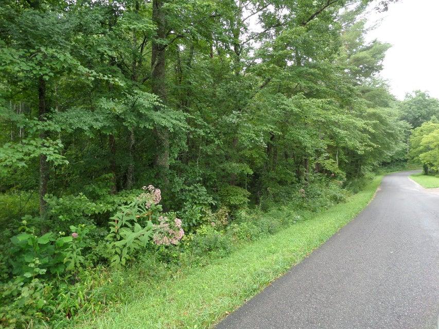 土地 为 销售 在 600 Coon Hollow Road Sunbright, 田纳西州 37872 美国