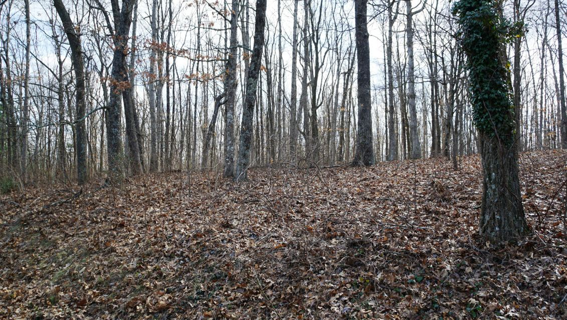 Additional photo for property listing at Renegade Mountain Pkwy  Crab Orchard, Теннесси 37723 Соединенные Штаты