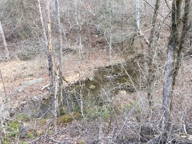 Land for Sale at 521 Archville Road Reliance, Tennessee 37369 United States