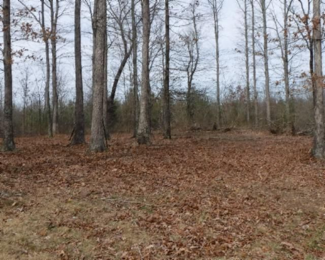 Land for Sale at 964 Wildwood Road McMinnville, Tennessee 37110 United States