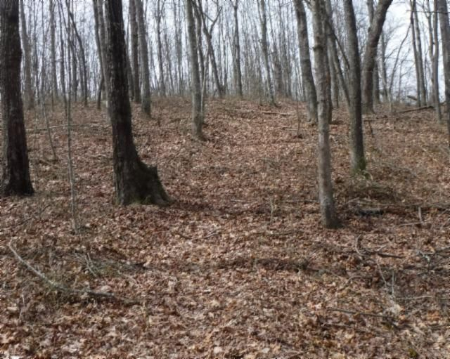 Land for Sale at 28 Ac. Wildwood Road McMinnville, Tennessee 37110 United States