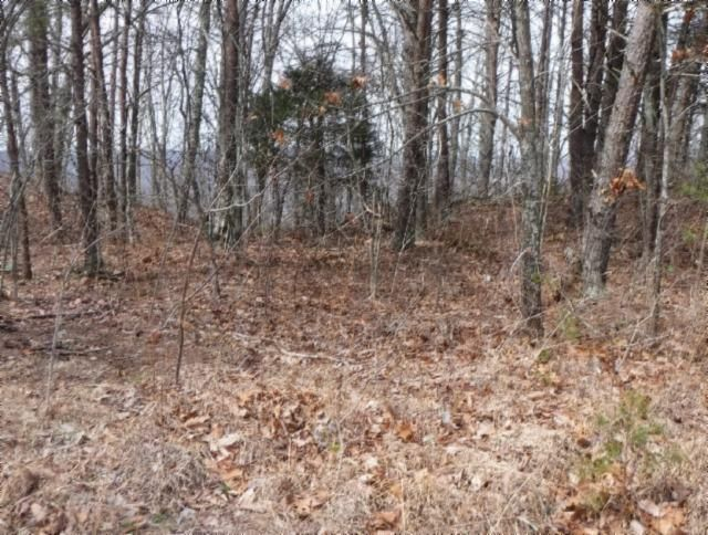 Land for Sale at 10 Ac Hwy 8 McMinnville, Tennessee 37110 United States