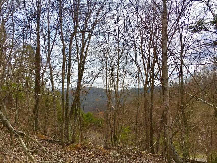 Terreno por un Venta en Lot 290 Bluff View Road Lot 290 Bluff View Road New Tazewell, Tennessee 37825 Estados Unidos