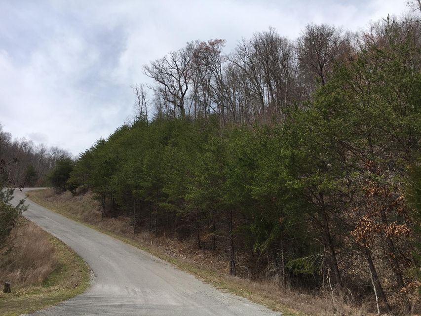 Additional photo for property listing at Lot 290 Bluff View Road Lot 290 Bluff View Road New Tazewell, Tennessee 37825 Estados Unidos