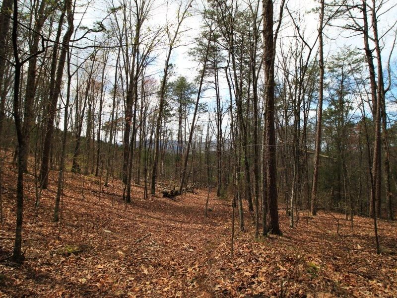 Additional photo for property listing at 1 Old Mill Road 1 Old Mill Road Tellico Plains, Tennessee 37385 United States