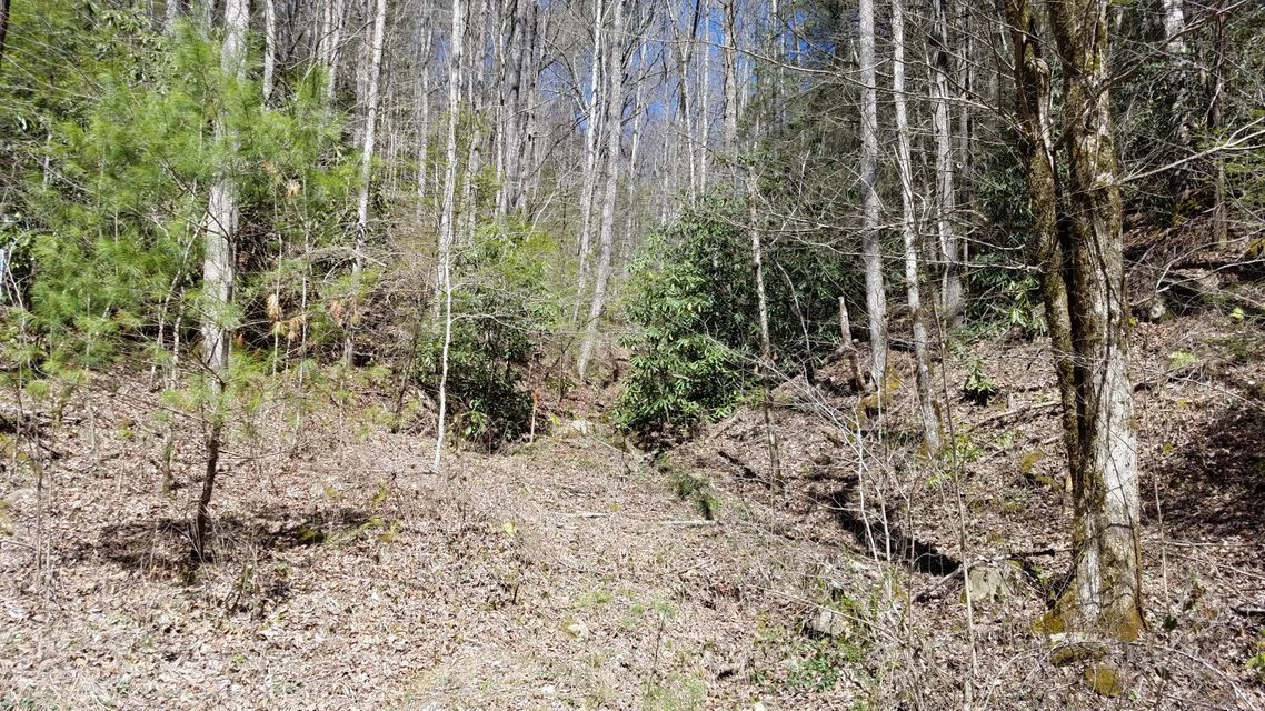 Additional photo for property listing at Old Fifteenth Road Old Fifteenth Road Del Rio, Tennessee 37727 Estados Unidos