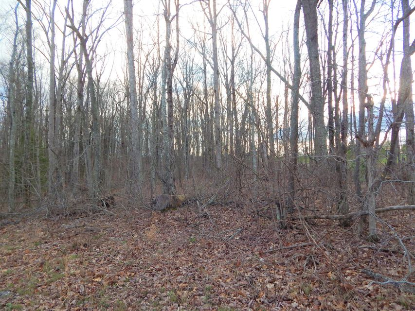 Land for Sale at Newton Road Newton Road Crossville, Tennessee 38572 United States