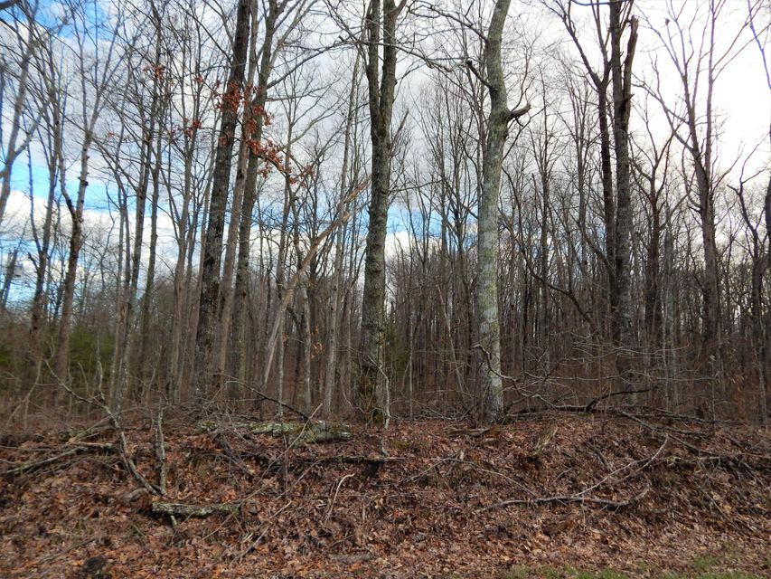 Additional photo for property listing at Newton Road Newton Road Crossville, Tennessee 38572 United States