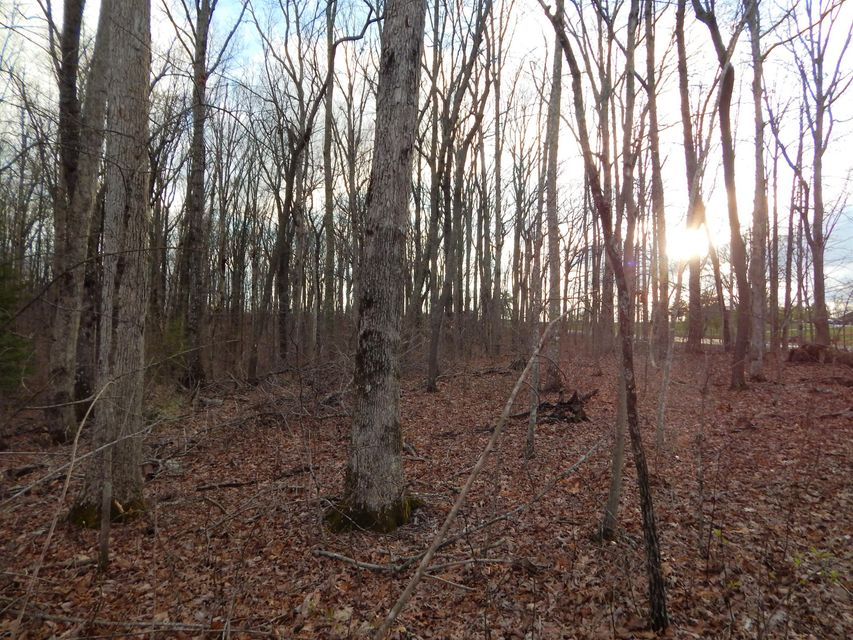 Additional photo for property listing at Newton Road Newton Road Crossville, Tennessee 38572 Estados Unidos