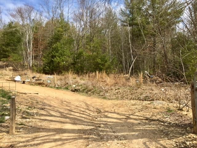 Land for Sale at 227 Dye Leaf Road Butler, Tennessee 37640 United States
