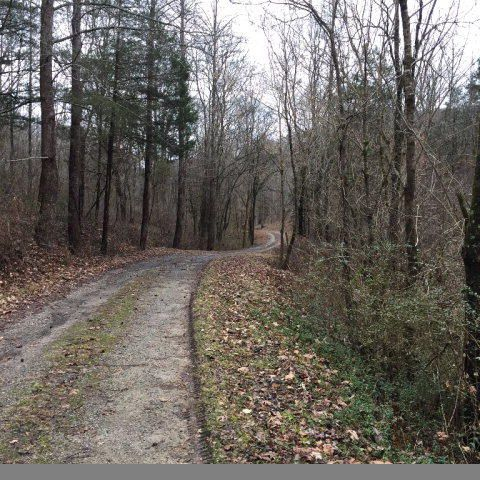 Land for Sale at Watts Hollow Road Road Chestnut Mound, Tennessee 38552 United States
