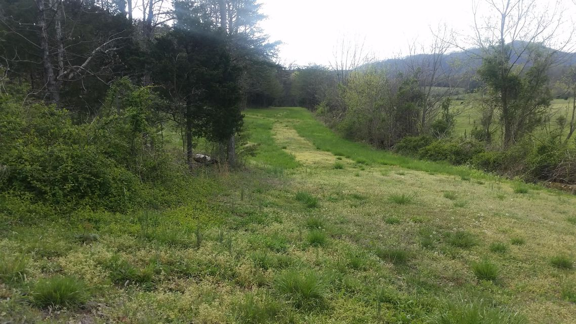 Land for Sale at 9233 Asheville Hwy 9233 Asheville Hwy Greeneville, Tennessee 37743 United States