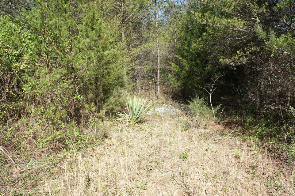 Additional photo for property listing at Beatys Chapel Road Beatys Chapel Road Tellico Plains, Tennessee 37385 États-Unis