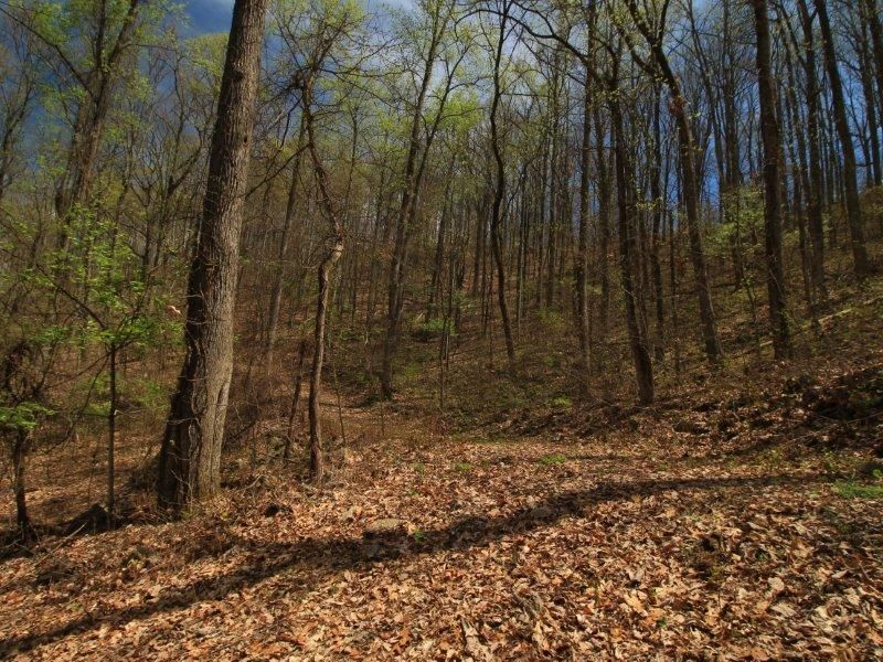 Additional photo for property listing at 1 Old Mill Road 1 Old Mill Road Tellico Plains, Теннесси 37385 Соединенные Штаты