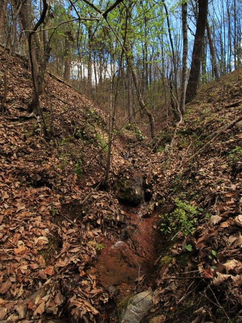 Additional photo for property listing at 1 Old Mill Road 1 Old Mill Road Tellico Plains, Tennessee 37385 Estados Unidos