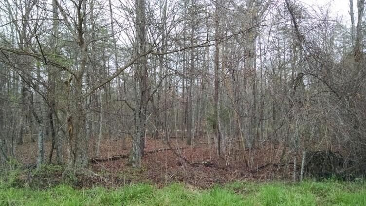 Land for Sale at 1150 Green Road 1150 Green Road Graysville, Tennessee 37338 United States