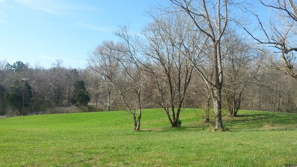 Land for Sale at Caney Ford Road Caney Ford Road Harriman, Tennessee 37748 United States