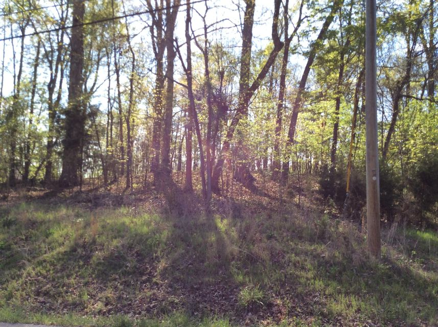 Additional photo for property listing at Pin Oak Rd, Lot 47 Pin Oak Rd, Lot 47 Rockwood, Tennessee 37854 États-Unis