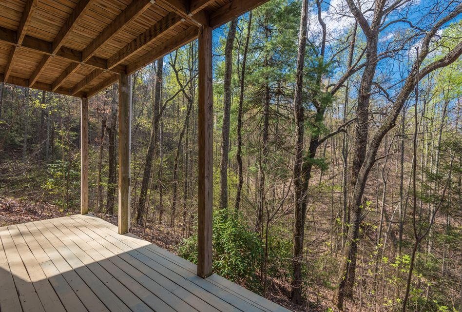 Additional photo for property listing at 1736 Silver Poplar Lane  Sevierville, Tennessee 37876 Estados Unidos