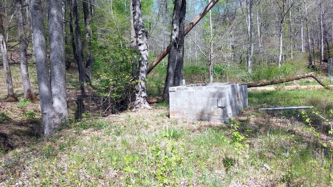 Additional photo for property listing at 1298 Dogtown Road  Ten Mile, Tennessee 37880 États-Unis
