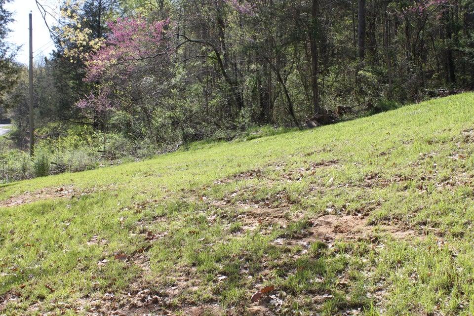 Terrain pour l Vente à 1428 Rocky Flat Road 1428 Rocky Flat Road Rutledge, Tennessee 37861 États-Unis
