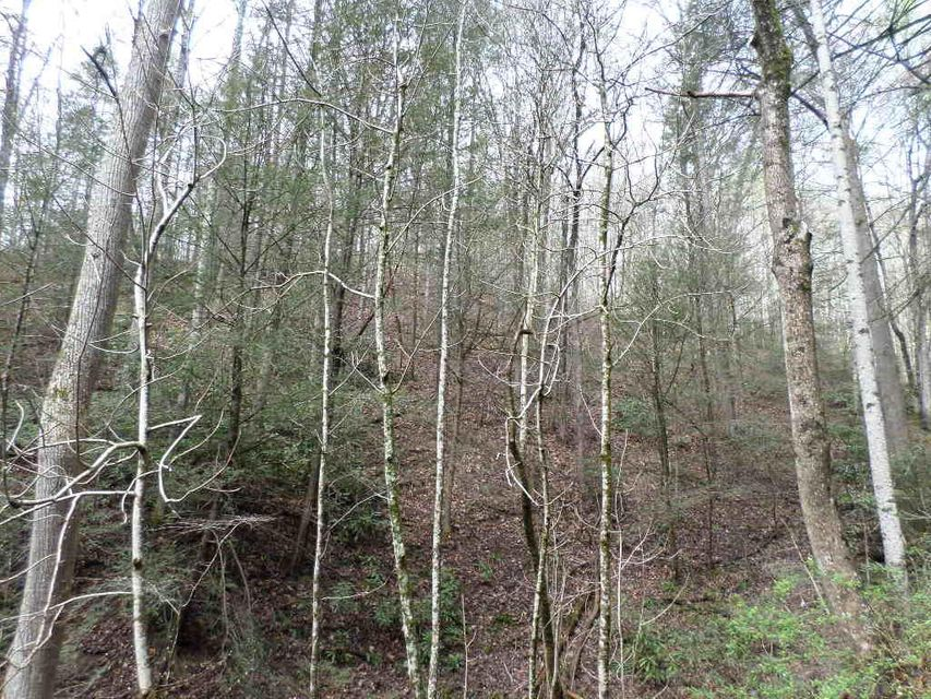 Additional photo for property listing at Boone Acres Lane Way Boone Acres Lane Way Pigeon Forge, Tennessee 37863 Estados Unidos
