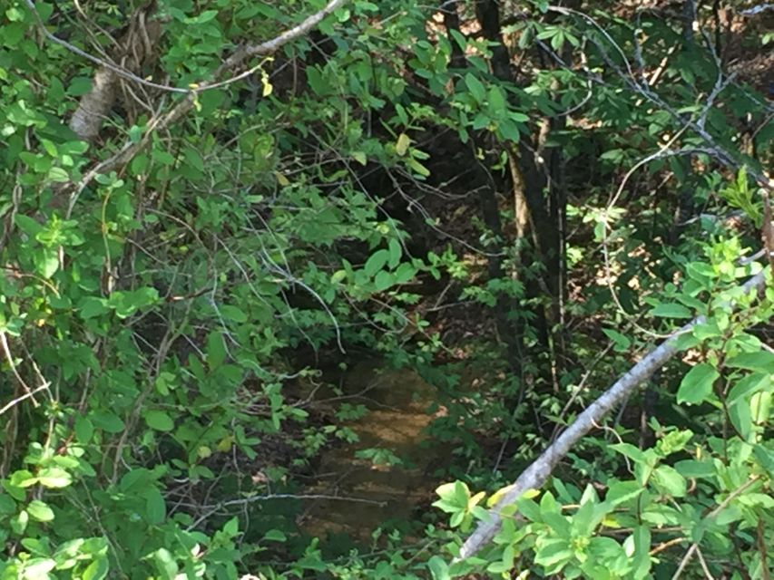 Additional photo for property listing at Harlan Mountain Drive Road Harlan Mountain Drive Road Tellico Plains, Tennessee 37385 États-Unis