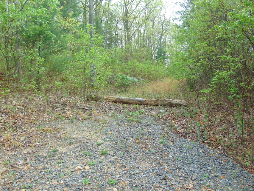 Land for Sale at Luna Way Parrottsville, Tennessee 37843 United States