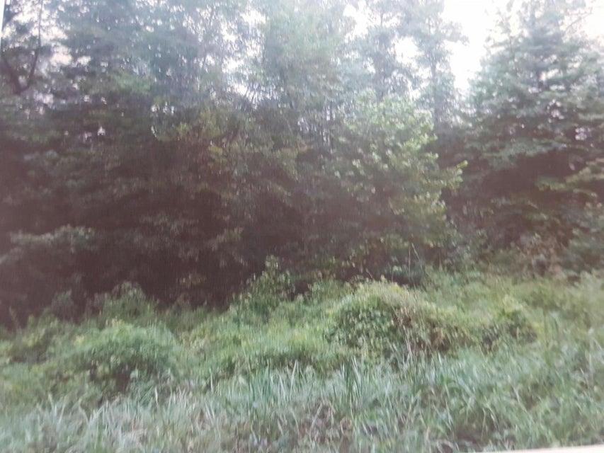 Земля для того Продажа на Isham Road Isham Road Winfield, Теннесси 37892 Соединенные Штаты