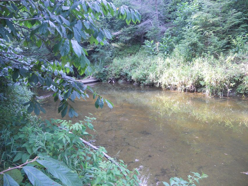 Additional photo for property listing at Rugby Pike Rugby Pike Allardt, Tennessee 38504 Estados Unidos