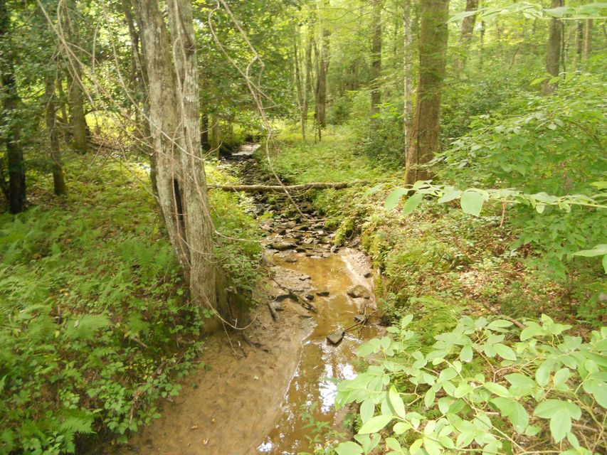 Land for Sale at Rugby Hwy Rugby, Tennessee 37733 United States