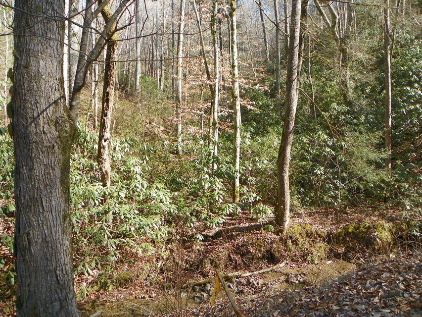 Terrain pour l Vente à Lot# 2 Sugar Maple Loop Road Lot# 2 Sugar Maple Loop Road Sevierville, Tennessee 37862 États-Unis