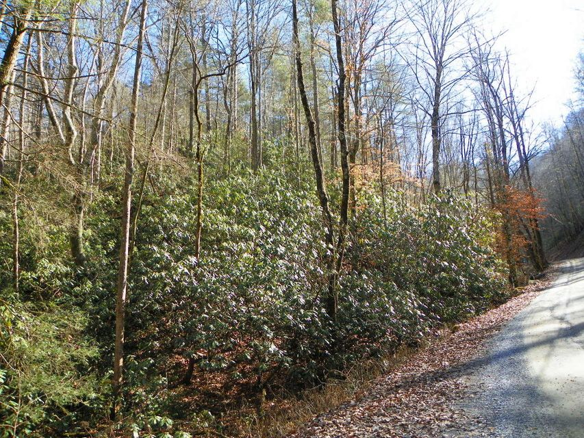 Additional photo for property listing at Lot# 2 Sugar Maple Loop Road Lot# 2 Sugar Maple Loop Road Sevierville, Tennessee 37862 United States