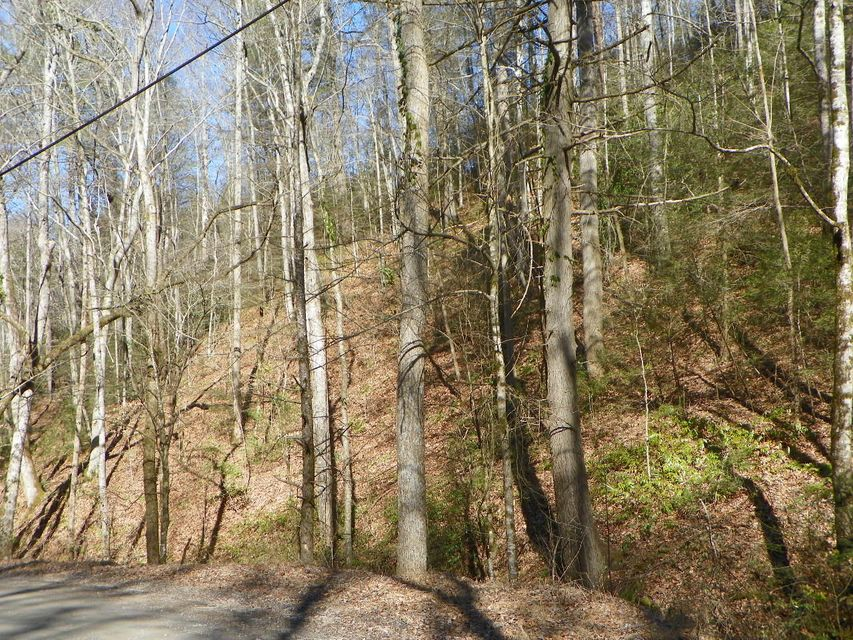 Additional photo for property listing at Lot# 2 Sugar Maple Loop Road Lot# 2 Sugar Maple Loop Road Sevierville, Tennessee 37862 États-Unis
