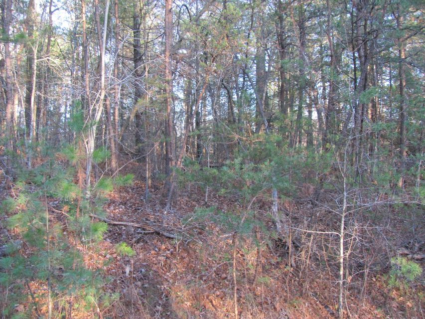 Additional photo for property listing at 182 Scarborough Drive 182 Scarborough Drive Fairfield Glade, Tennessee 38558 United States