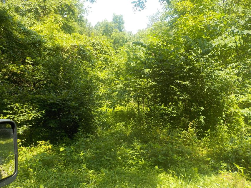 Additional photo for property listing at 21.03 Acre Merritt Road 21.03 Acre Merritt Road Washburn, Теннесси 37888 Соединенные Штаты