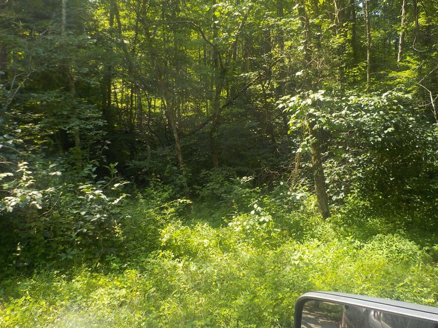 Additional photo for property listing at 21.03 Acre Merritt Road 21.03 Acre Merritt Road Washburn, Tennessee 37888 Estados Unidos