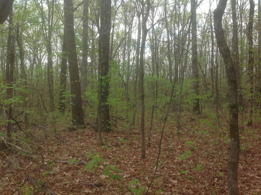 Land for Sale at Waukegan Road Waukegan Road Crossville, Tennessee 38571 United States
