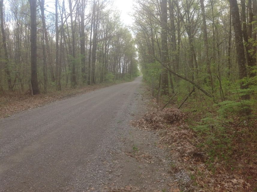 Additional photo for property listing at Waukegan Road Waukegan Road Crossville, 田纳西州 38571 美国
