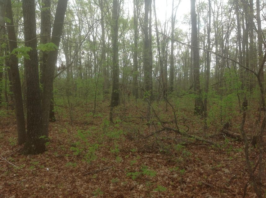 Additional photo for property listing at Waukegan Road Waukegan Road Crossville, Tennessee 38571 United States