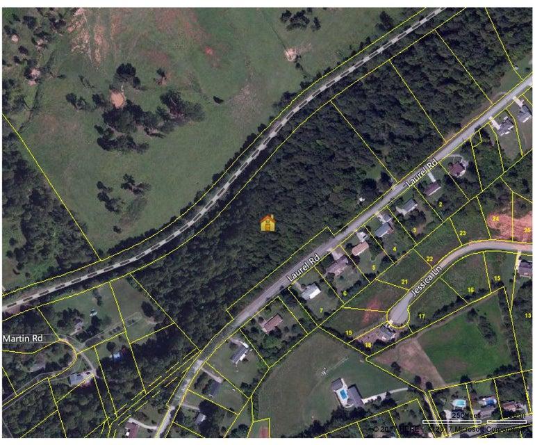 土地,用地 为 销售 在 1219 Laurel Road 1219 Laurel Road Clinton, 田纳西州 37716 美国