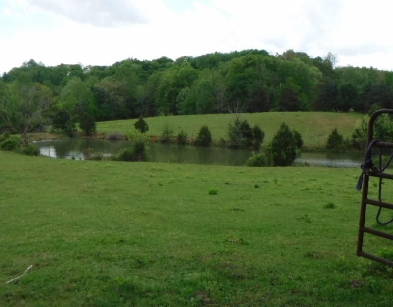 Land for Sale at 10.44 Ac. Wilmouth Road Rickman, Tennessee 38580 United States