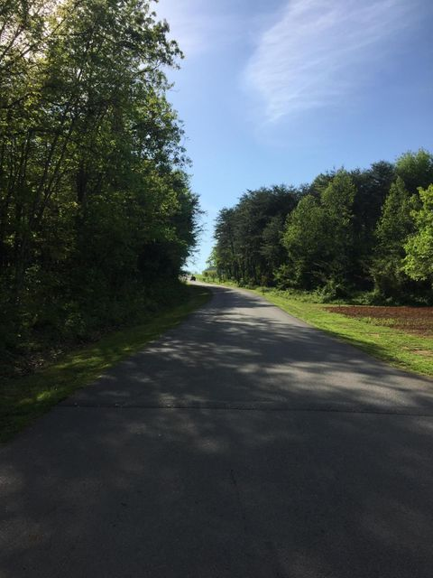 Additional photo for property listing at Lorne Lane Lorne Lane Blaine, Tennessee 37709 Estados Unidos