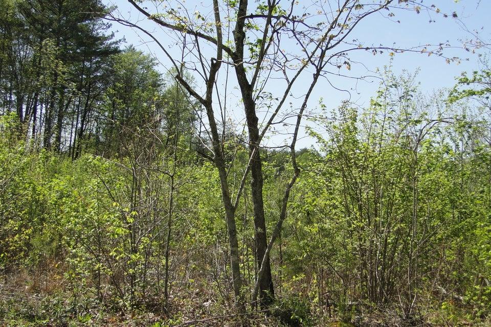 Terrain pour l Vente à Epperson Road Epperson Road Tellico Plains, Tennessee 37385 États-Unis