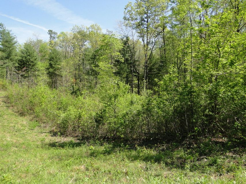 Additional photo for property listing at Epperson Road Epperson Road Tellico Plains, Tennessee 37385 États-Unis