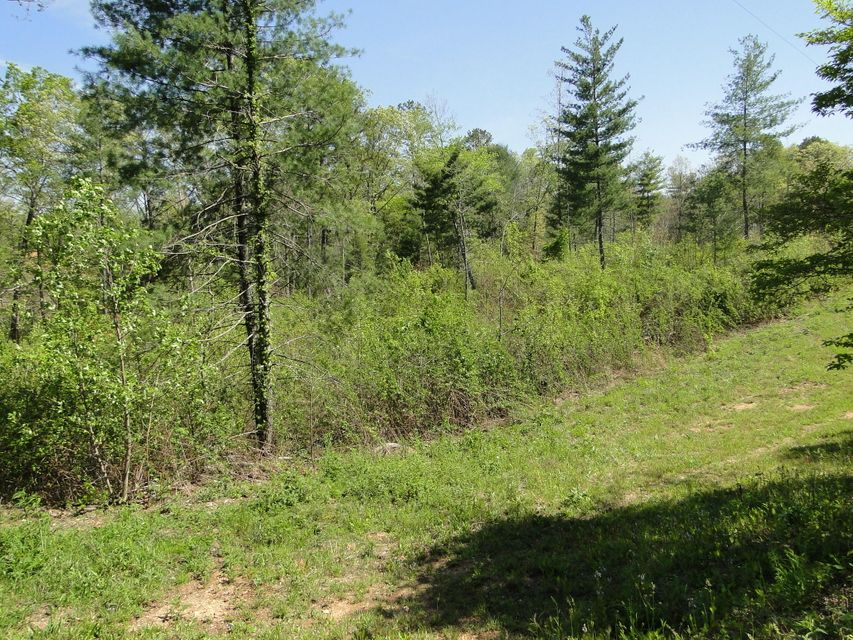 Additional photo for property listing at Epperson Road Epperson Road Tellico Plains, Tennessee 37385 Estados Unidos
