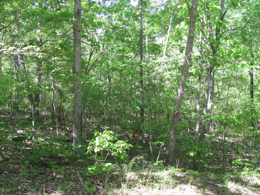 Land for Sale at 13 Appleby Court 13 Appleby Court Crossville, Tennessee 38558 United States