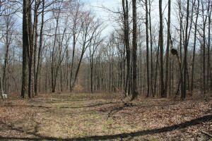 Land for Sale at Wilder Hwy Crawford, Tennessee 38554 United States