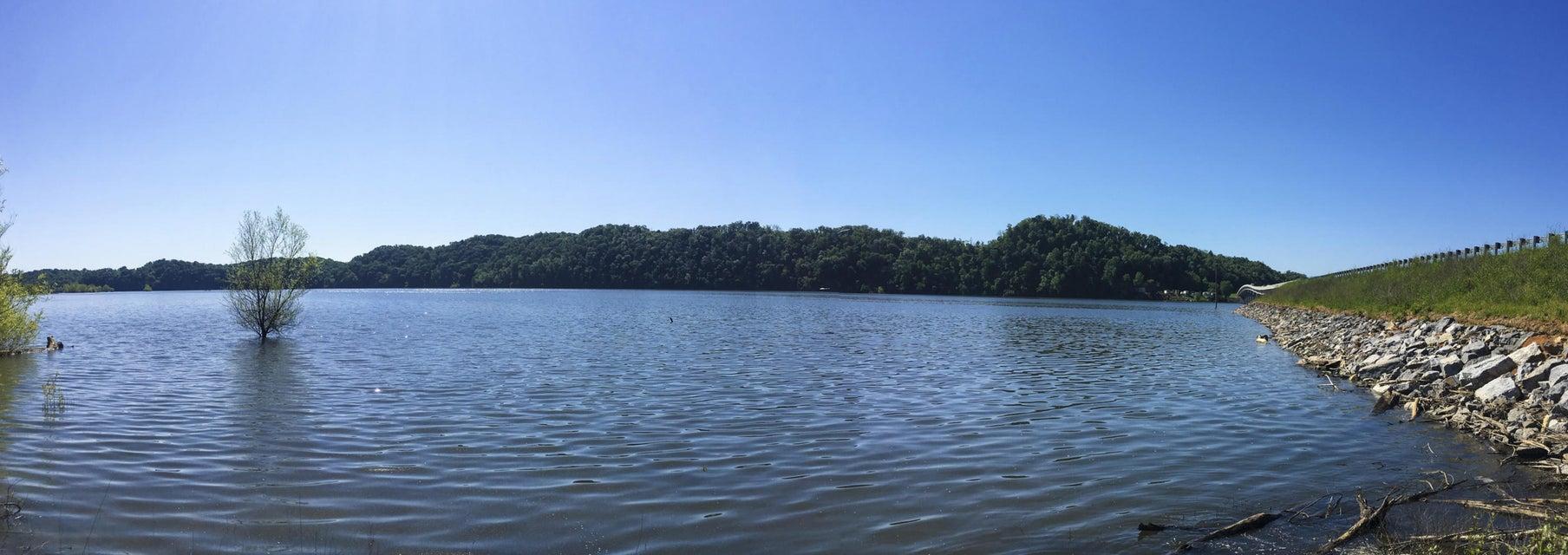 土地,用地 为 销售 在 Hwy 25E Hwy 25E White Pine, 田纳西州 37890 美国